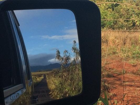Reflections in the mirror... private land in Makaweli on Kauai, leading to a secret location with mei Schatzl... blue sky, green landscape and beautiful rich red soil... ❤